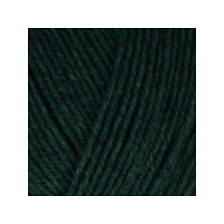 Regia Premium Silk Sockenwolle 100gr green 00070