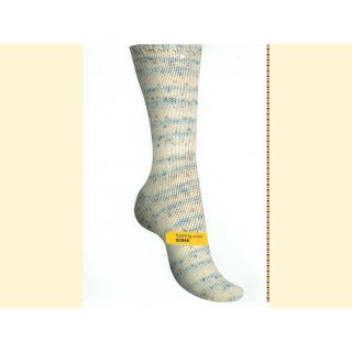 Regia Premium Silk Sockenwolle 100gr flashing color 00066