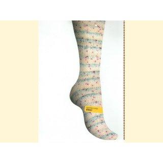 Regia Premium Silk Sockenwolle 100gr sparkle color 00067